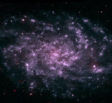 Triangulum Galaxy M33.  Swift satellite ultraviolet image. NASA.